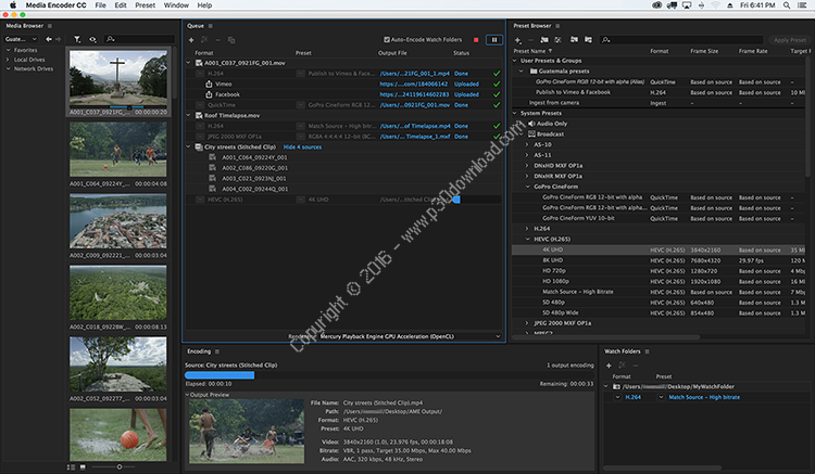 Adobe Media Encoder CC 2018 v12.1.1.12 x64 Crack