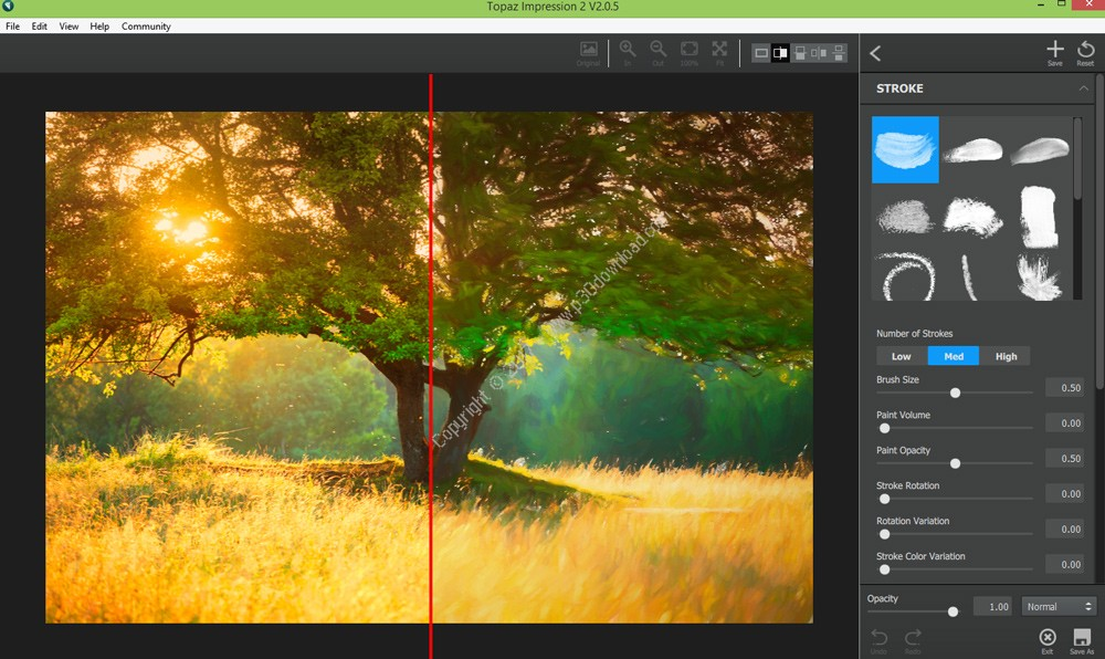Topaz Impression v2.0.5 Crack