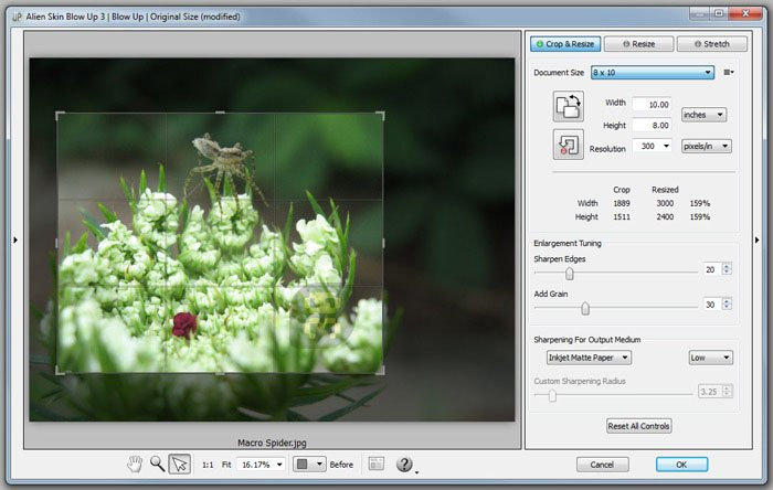 Alien Skin Blow Up Plugin 3.1.0.140 - Zooming Images Without Dropping Quality Crack